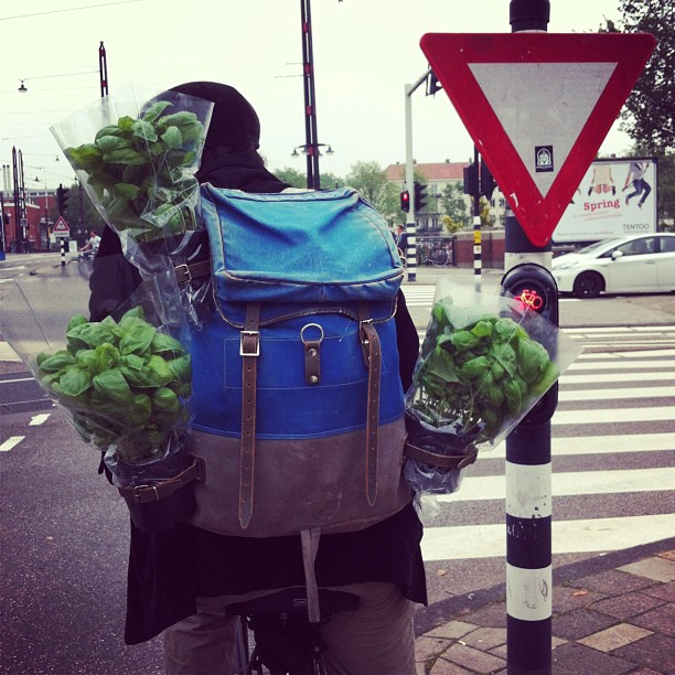 In Amsterdam you can encounter some interesting people on bikes…