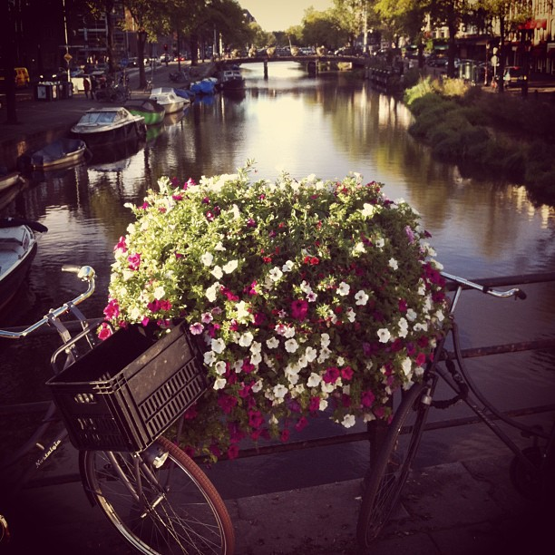 Ahhh the canals!