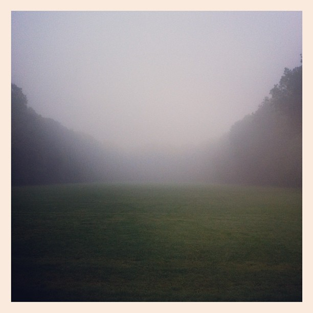 Foggy-run